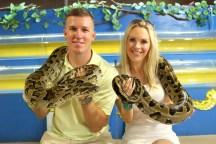 Burmese python!
