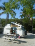 Peniki Beneath The Palms of Key Largo