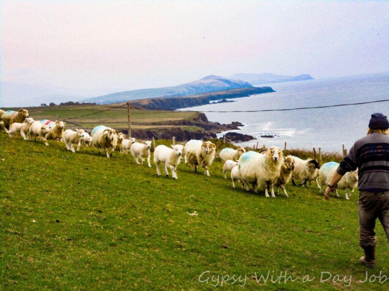 Skellig Ring, Ireland.