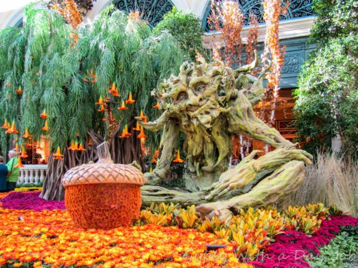 Beautiful Bellagio flowers at the Bellagio Botanical Conservatory, on of Las Vegas 101 Things to Do.
