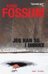 Jeg kan se i mørke af Karin Fossum