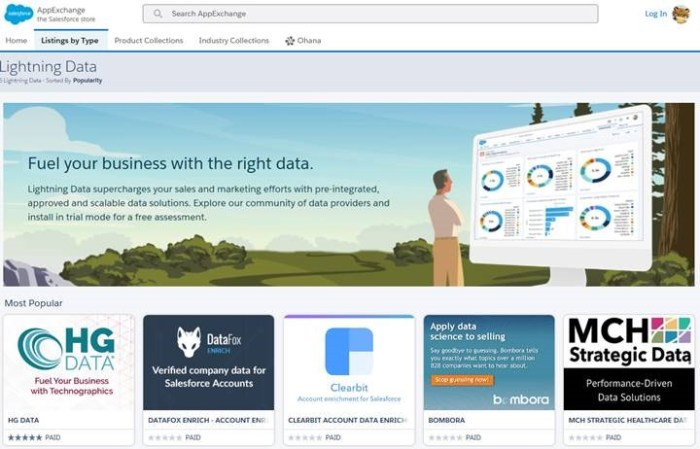 The new Lightning Data services on the AppExchange.