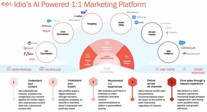 Idio's AI Powered 1:1 Marketing Platform