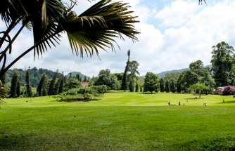 Royal Botanical Gardens, Peradeniya