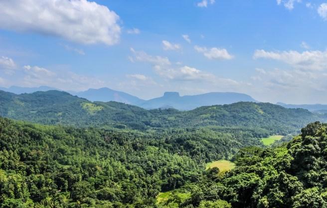 Hills near Kandy