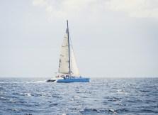 Catamaran in the Caribbean Sea