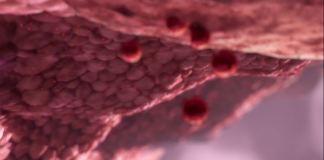 prueba_coronavirus