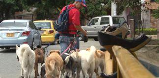 paseador_de_animales