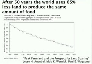 food footprint