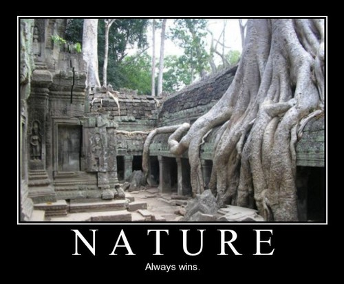 nature always win
