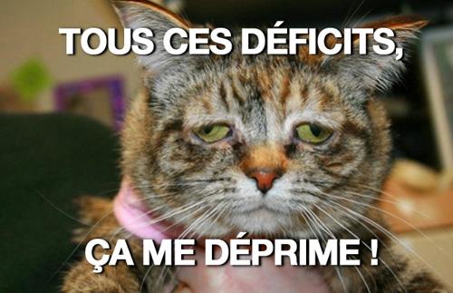 depressed cat - déficits
