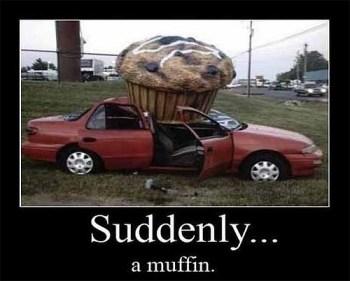 suddenly a muffin