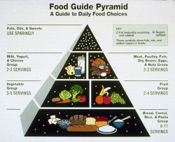 USDA food pyramid 1992