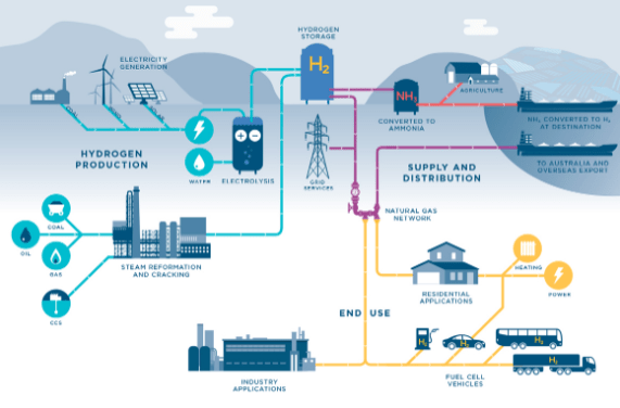 Hydrogen supply chain, showing hydrogen production, supply and distribution, and end uses, including fuel cells