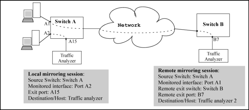 Local And Remote Sessions Showing Mirroring Terms