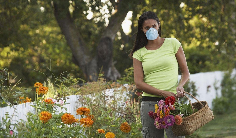 Pollen Allergies - Air purification brings hope! > H2O International ...