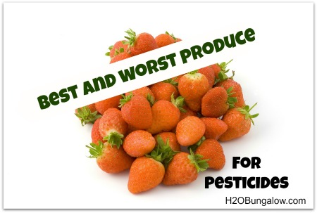 The Best and Worst Produce for Pesticides