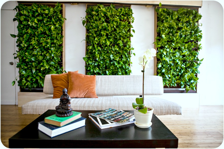 Plantaire-three-wall-units-in-living-area-H2OBungalow