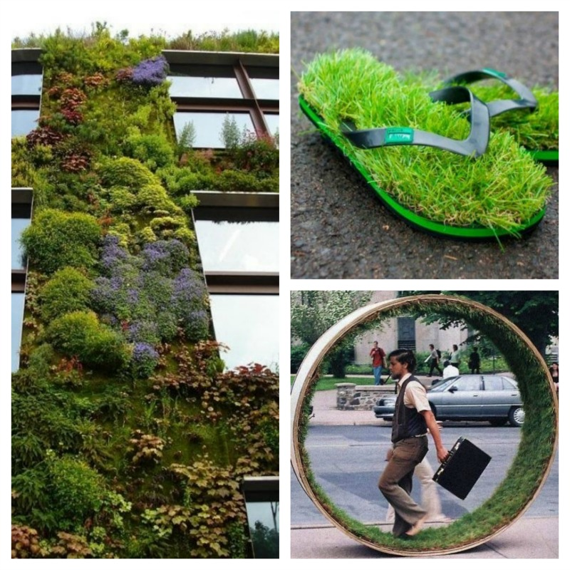 We-need-green-plants-in-our-daily-lives-H2OBungalow