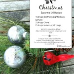 Nothing makes a room feel like the holidays better than the inviting scents of this Christmas essential oils recipe. Be sure to stop by and download your free copy of the recipe at www.H2OBungalow.com