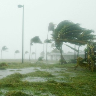 Free downloadable extensive hurricane preparation checklist to build a hurricane kit. Protect your family and pets by being prepared.