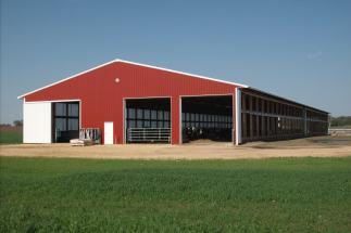 Freestyle Dairy Farm in Illinois