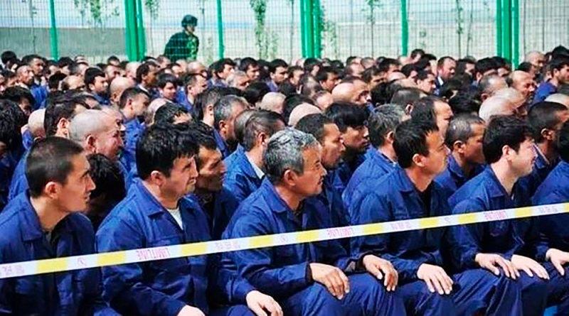 Уйгурская правозащитница: почему мусульманские страны молчат по поводу геноцида уйгуров?