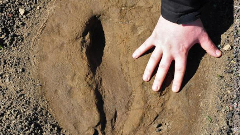 Baraj inşaatı sırasında bulundu, 5 bin yıllık... Yeri gizli tutuluyor