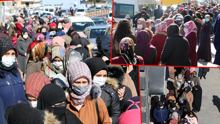 Erzurum'da indirimi duyan akın etti, koronavirüs unutuldu