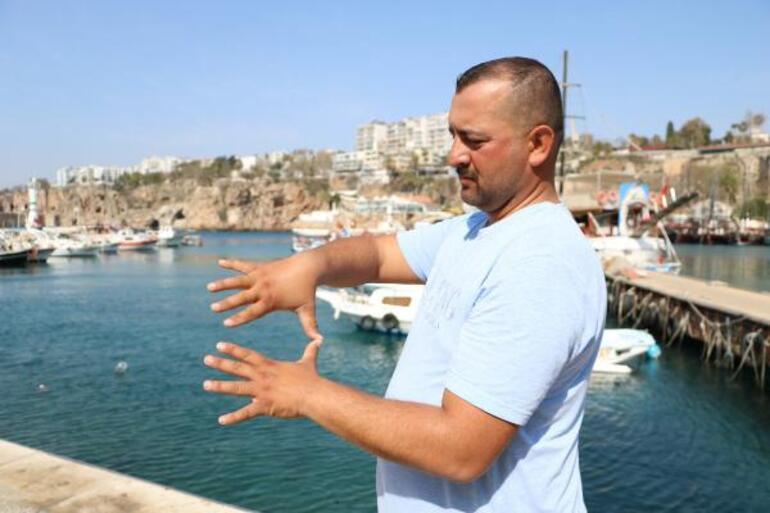 Antalyada zehirli trakonya balığı paniği Anlık teması hastanelik etti