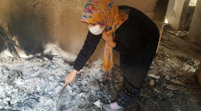 Artvin'de yanan köyde yangının izleri silinmeye çalışılıyor