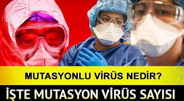 Mutasyon virüs nedir Mutasyon virüs hangi illerde görüldü Sağlık Bakanı Fahrettin Koca tek tek açıkladı