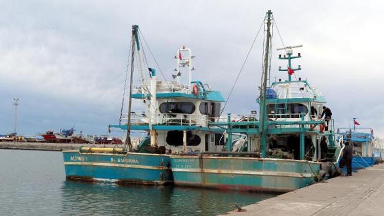 Karadeniz'de hamsi azaldı, 'çaça' avı başladı