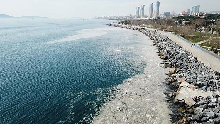 Pendik ve Kartal sahilinde tedirgin eden görüntü! 'İlk kez böyle bir manzara ile karşılaştık'