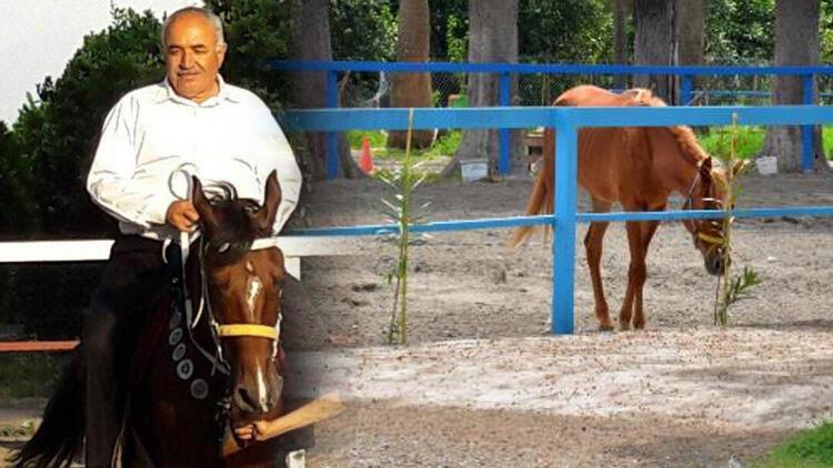 Hatay'daki kayıp atlarla ilgili yeni detaylar ortaya çıktı! Bakamayınca 'kaçtı' ihbarı yapmışlar