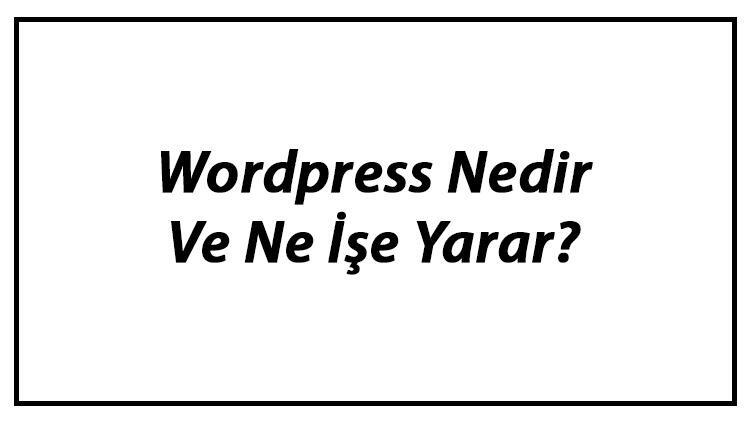 Wordpress Nedir Ve Ne İşe Yarar? Wordpress Kurulumu Ve Kullanımı Hakkında Bilgi