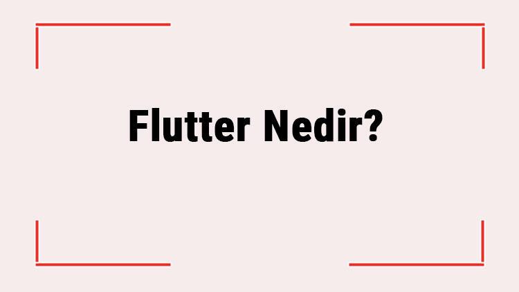 Flutter Nedir? Neden Flutter Öğrenmek Gerekir? Flutter'in Tüm Özellikleri