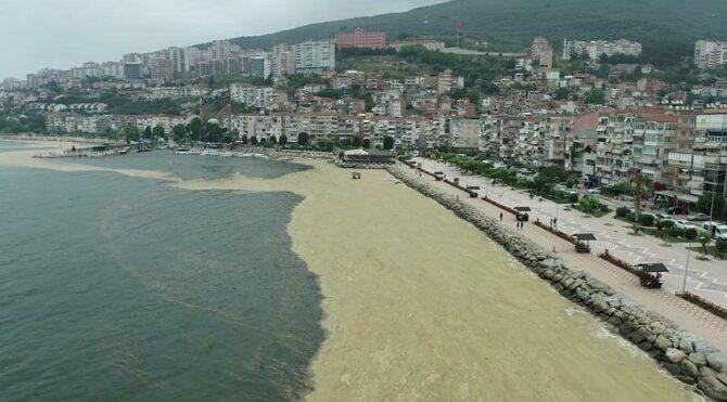 Çevre ve Şehircilik İl Müdürlüğü'nden deniz salyası açıklaması