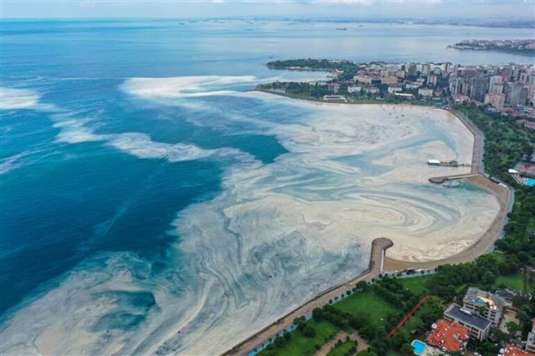 Caddebostan Sahilinde müsilaj kâbusu Yeniden arttı