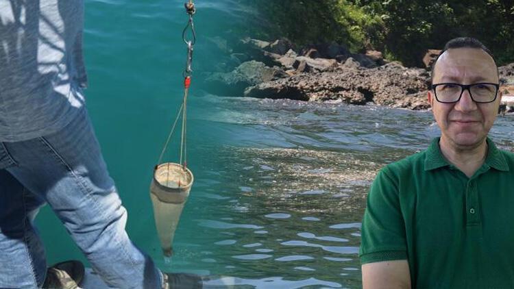 Son dakika: Karadeniz'deki kirlilikte 'müsilaj' endişesi! Numune alındı