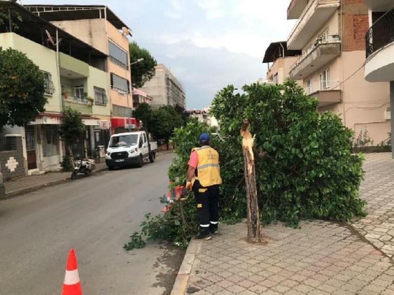 11 dakika süren tam fırtına Aydında ölüme, 5 ilçede yıkıma neden oldu Belediye Başkanı: Şimdiye kadar böyle bir şey görmedim
