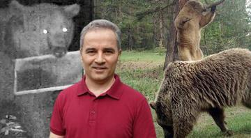 Doğu Karadenizde turistlere ayı uyarısı Görünce bağırıp şarkı söyleyin