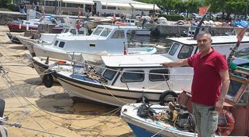 Balıkçılar ve esnaf deniz salyasından dertli
