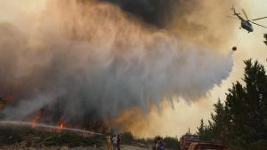 Son dakika: İşte Türkiye'deki orman yangınlarında son durum! AFAD il il açıkladı