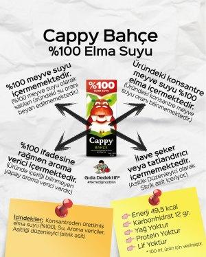 Cappy Bahçe %100 Elma Suyu - Gıda Dedektifi