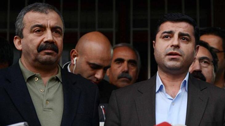 """Sırrı Süreyya Önder: """"Demirtaş 'Bağrınıza taş basın, oyunuzu verin' dediğinde…"""