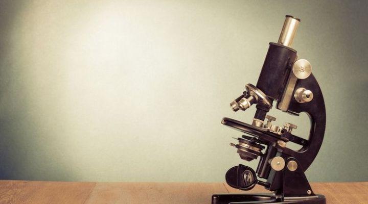 Una Guía 100% Científica Para Desarrollar Tus Habilidades Sociales