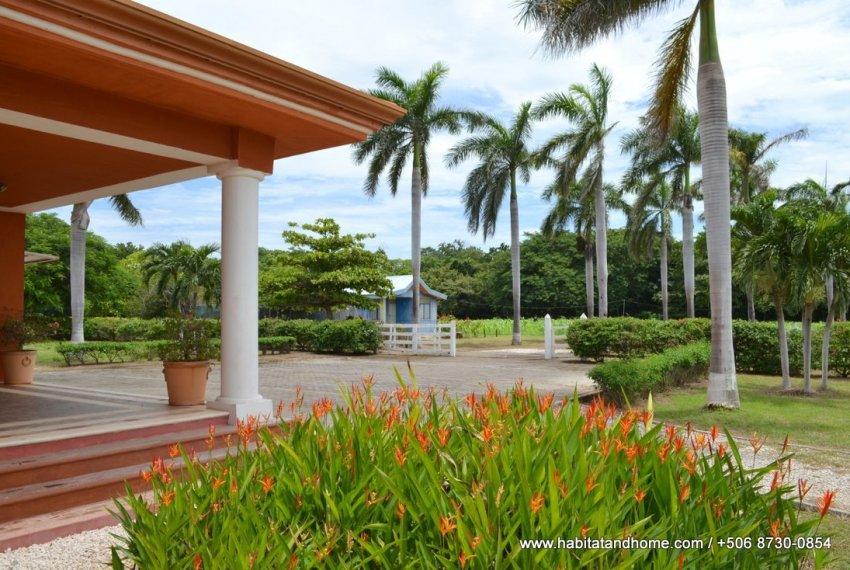 finca Guanacaste (1)
