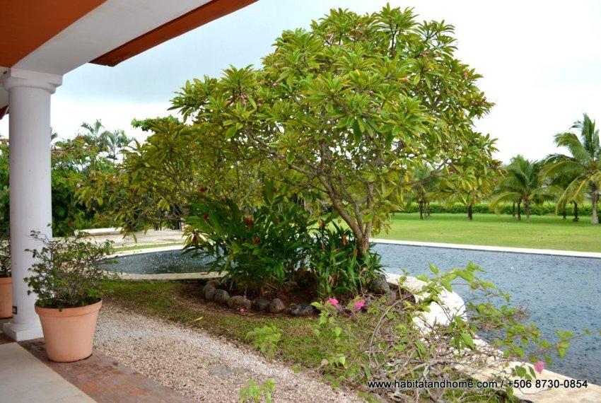finca Guanacaste (3)