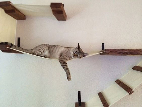 meubles pour chats 6 idees pour s